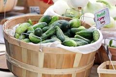 Basket of Cucumbers Royalty Free Stock Image