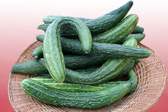Basket of Cucumbers Stock Image