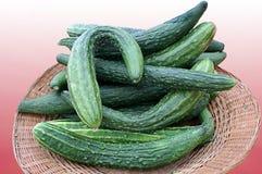 Basket of Cucumbers Stock Image
