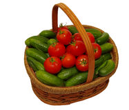 Basket with cucumbers and tomatoes Stock Photography