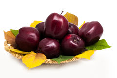 Basket of dark red apples on a white background Royalty Free Stock Photo