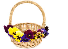 Basket decorated with flowers. Royalty Free Stock Image