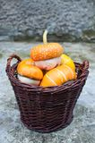 Basket of decorative pumpkins (Cucurbita pepo) Royalty Free Stock Photo