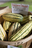 Basket of Delicata Squash for Sale Stock Images