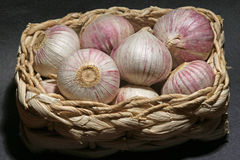 Basket with delicious garlic tubers. Stock Photo