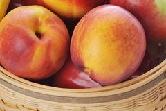 Basket with different fruits Royalty Free Stock Photos