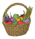Basket with different fruits color Stock Image