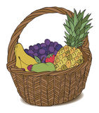 Basket with different fruits color Stock Photography