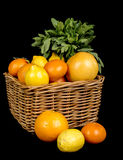 Basket with different fruits in season Royalty Free Stock Photography