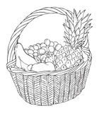 Basket with different fruits  Royalty Free Stock Photo