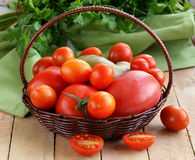 Basket with different types of tomatoes Royalty Free Stock Photos