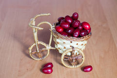 Basket with dogwood Stock Photo