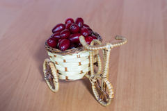 Basket with dogwood Stock Photography