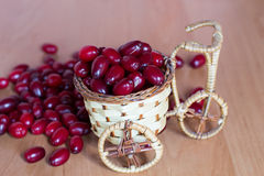 Basket with dogwood Royalty Free Stock Images