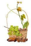 Basket of dried fruits and grapes Royalty Free Stock Photo