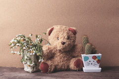 Basket of dry flowers and a teddy bear with pots of cactus Stock Photo