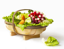 Basket with early spring vegetables: radishes, carrots, onions, lettuce Stock Photography