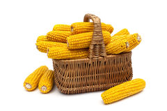Basket with ears of corn on a white background Stock Images