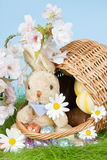 Basket with easter bunny Stock Photography