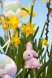 Basket of easter daffodils Royalty Free Stock Photography