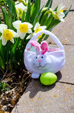 Basket and Easter egg Royalty Free Stock Photos