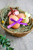 Basket with easter egg with ribbon Royalty Free Stock Photography