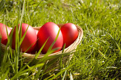 Basket of easter eggs stock photo