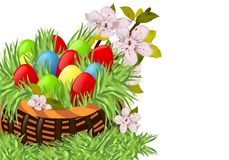 Basket with Easter eggs. And cherry flowers on white background Royalty Free Stock Photos