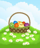 Basket with Easter eggs and chicken. Spring landscape  with  basket with Easter eggs and chicken Royalty Free Stock Photo