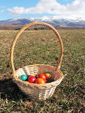 Basket with Easter Eggs. Basket with colorful Easter eggs left on the ground, field with sprouting crops, mountain hills in the distance Stock Photos