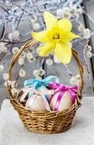 Basket of easter eggs decorated with yellow daffodil Royalty Free Stock Photo