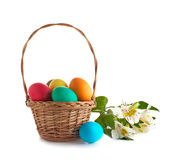 Basket with easter eggs and flowers isolated. Wicker basket with easter eggs and lily flowers isolated on white background Stock Image