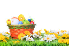 Basket with easter eggs on a meadow. Before white Stock Images