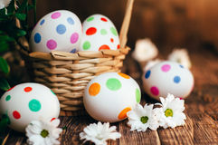 Basket with Easter eggs painted in a circle, spring branch with green leaves,. Wooden orange - brown background Stock Images