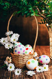 Basket with Easter eggs painted in a circle, spring branch with green leaves,. Wooden orange - brown background Royalty Free Stock Photo