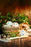Basket with Easter eggs. Painted in a circle, spring branch with green leaves, wooden orange - brown background Royalty Free Stock Photos