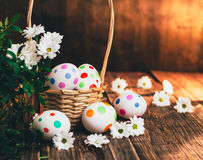Basket with Easter eggs painted in a circle, spring branch with green leaves,. Wooden orange - brown background Stock Photography