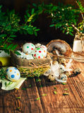 Basket with Easter eggs painted in a circle, spring branch with green leaves,. Wooden orange - brown background Stock Photo
