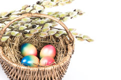 Basket with easter eggs and spring flowers Stock Images