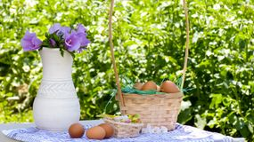 Basket of easter eggs royalty free stock photos
