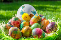 Basket with easter eggs and tulips. In april Royalty Free Stock Image