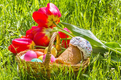 Basket with Easter eggs, tulips on the grass Royalty Free Stock Images