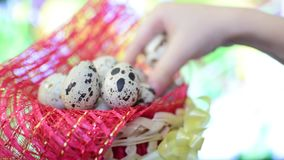 Basket with Easter eggs stock video footage
