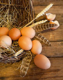 Basket of eggs Stock Photos