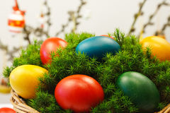 Basket of eggs. Mosses in easter basket with painted eggs royalty free stock photography