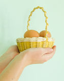 Basket of eggs Royalty Free Stock Image