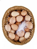 Basket of eggs. And a chicken feather isolated on white background Stock Images