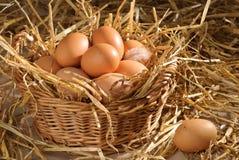 Basket Of Eggs Stock Image