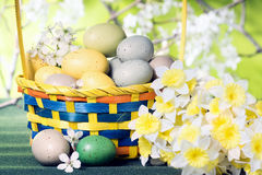 Basket with eggs and bouquet of daffodils on the background of a Stock Images