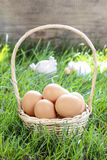 Basket of eggs on grass Royalty Free Stock Image
